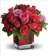 Madly in Love by Teleflora by US Teleflorist .com- Associated with other USA Teleflorists