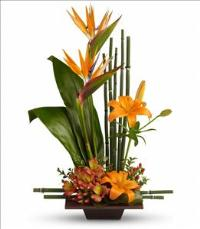 Exotic Grace by US Teleflorist .com- Associated with other USA Teleflorists