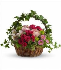 Fairest of All by US Teleflorist .com- Associated with other USA Teleflorists