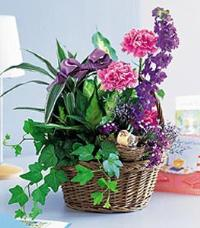 Basket Garden with Bird by US Teleflorist .com- Associated with other USA Teleflorists