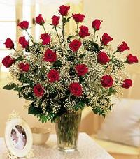 Field Of Roses by US Teleflorist .com- Associated with other USA Teleflorists