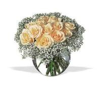 Dozen White Roses by US Teleflorist .com- Associated with other USA Teleflorists