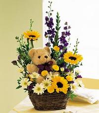 Flowers with a Plush Bear by US Teleflorist .com- Associated with other USA Teleflorists