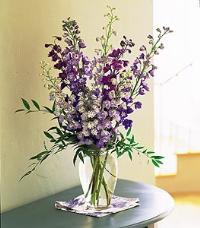 Hybrid Delphinium by US Teleflorist .com- Associated with other USA Teleflorists