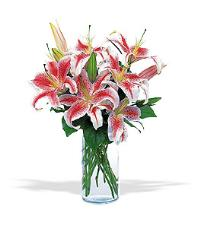 Stargazer Bouquet by US Teleflorist .com- Associated with other USA Teleflorists