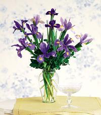 Iris Bouquet in a Vase by US Teleflorist .com- Associated with other USA Teleflorists
