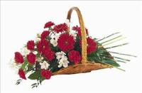 Basket Of Comfort by US Teleflorist .com- Associated with other USA Teleflorists