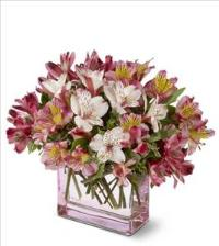Always Alstroemeria by US Teleflorist .com- Associated with other USA Teleflorists