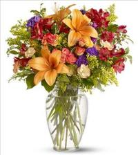 Classic Celebration by US Teleflorist .com- Associated with other USA Teleflorists