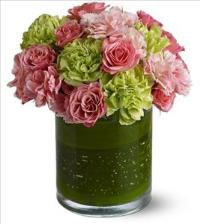 Delightful Day by US Teleflorist .com- Associated with other USA Teleflorists